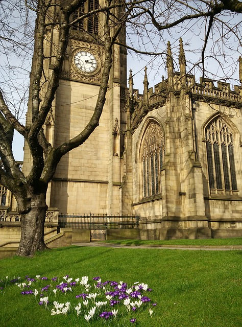 Side view of Manchester Cathedral. There is a bare tree in the foreground