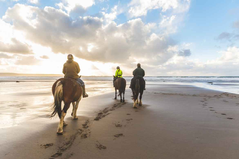 three people on horseback riding on a beach at sunrise